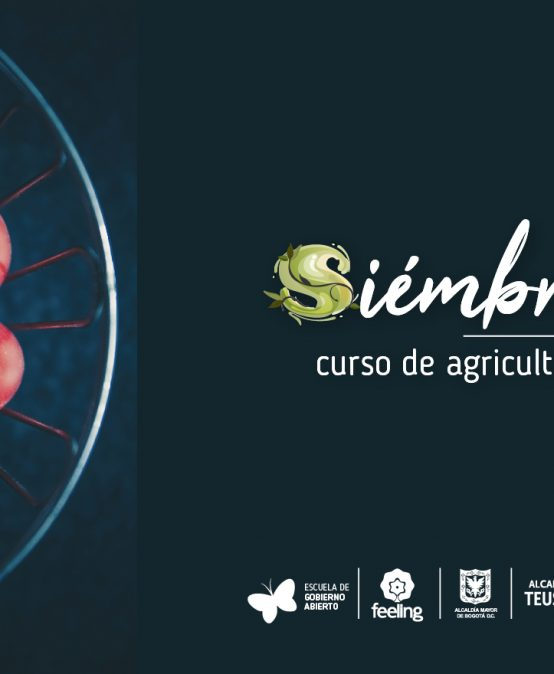 siembraTE